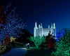Washington Mormon Temple Festival of Lights