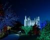Washington Mormon Temple Festival of Lights